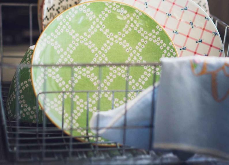 Piatti biodegradabili: cosa bisogna sapere su questi prodotti eco-friendly